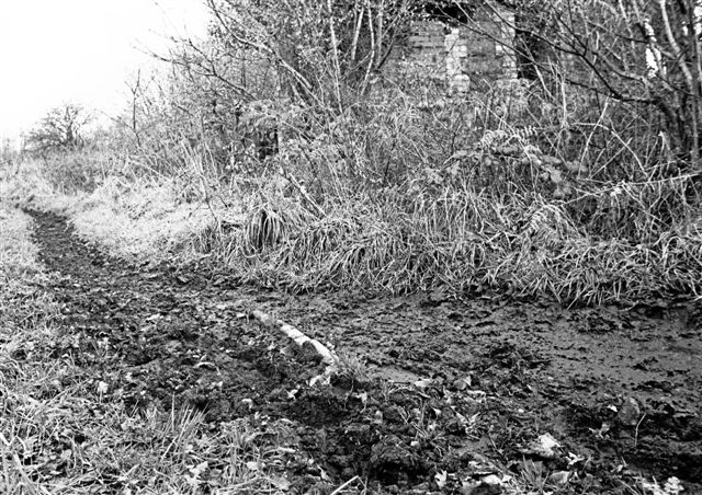 Station from the trackbed in 1985 - slate edging visible